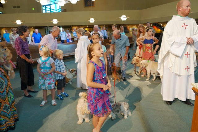 Blessing of the Animals 2014_2050